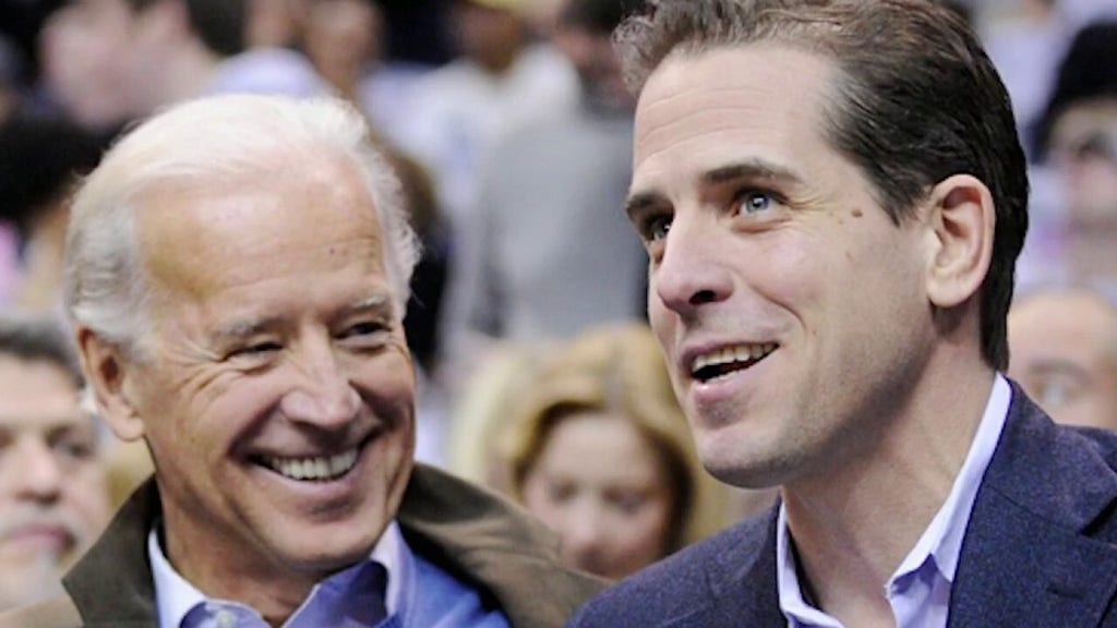 Ukraine official sought 'advice' from Biden's son on stopping 'political' actions