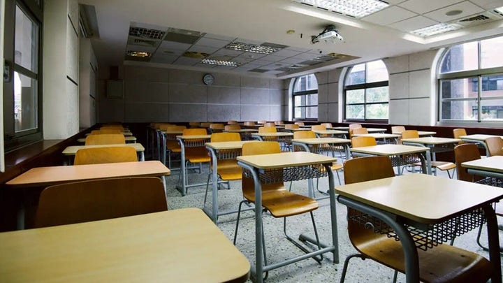 Schools subtly import 'anti-American, woke' ideas into classes: Vryf in