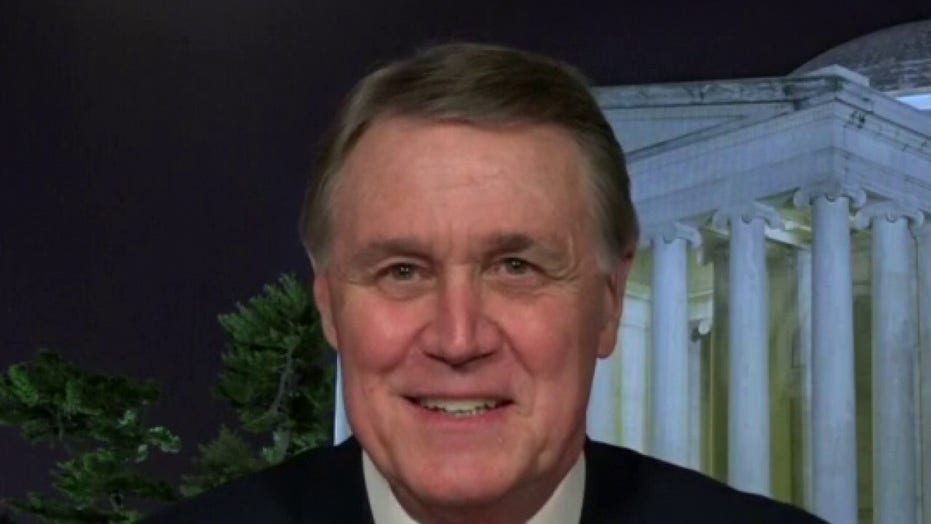 Suo. David Perdue: Georgia runoff elections are 'fight of our life'