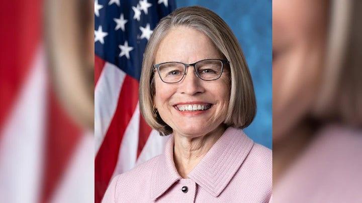 Effort to unseat GOP Rep. Miller-Meeks divides House Democrats