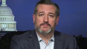 Cruz blasts media for not 'even pretending to do their job' on Hunter Biden story