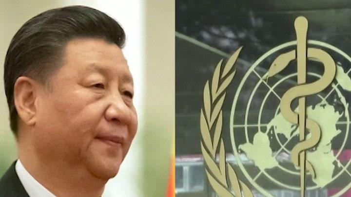 Did China pressure the WHO to delay global coronavirus warning?