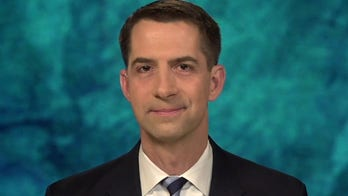 Cotton on 'Biden border crisis': 'This was altogether predictable' and was 'predicted' last year