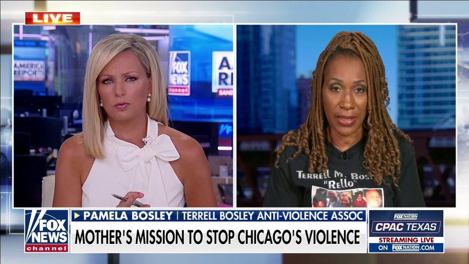 Chicago mother of murdered son speaks out on gun violence