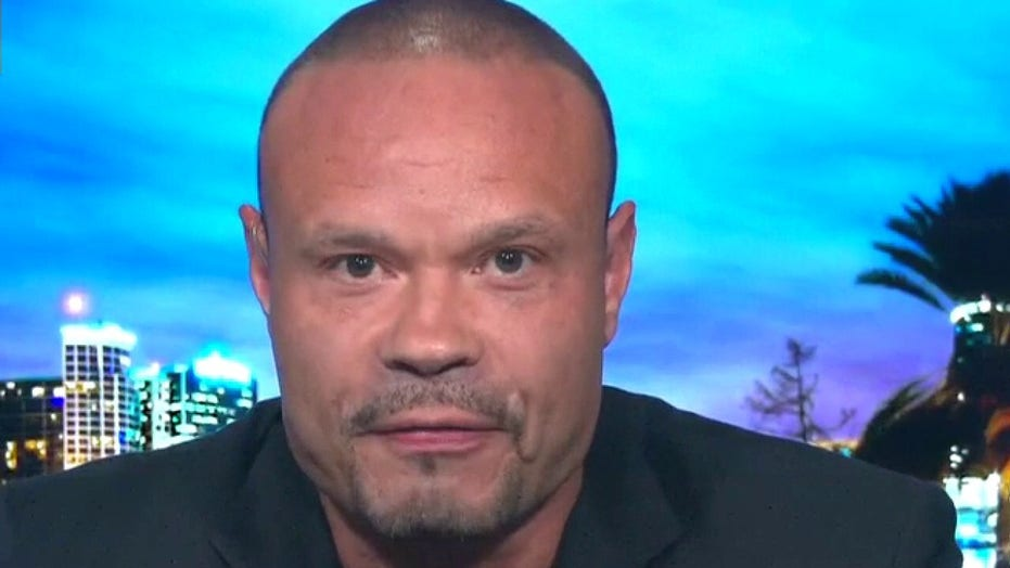 Bongino on Senate battle over Supreme Court vacancy