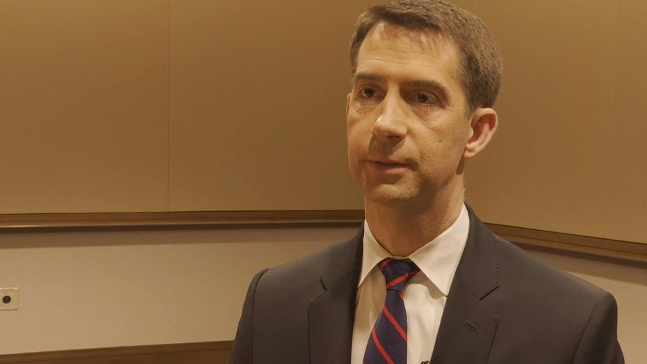 Tom Cotton's Big Idea to raise the minimum wage while keeping Americans employed