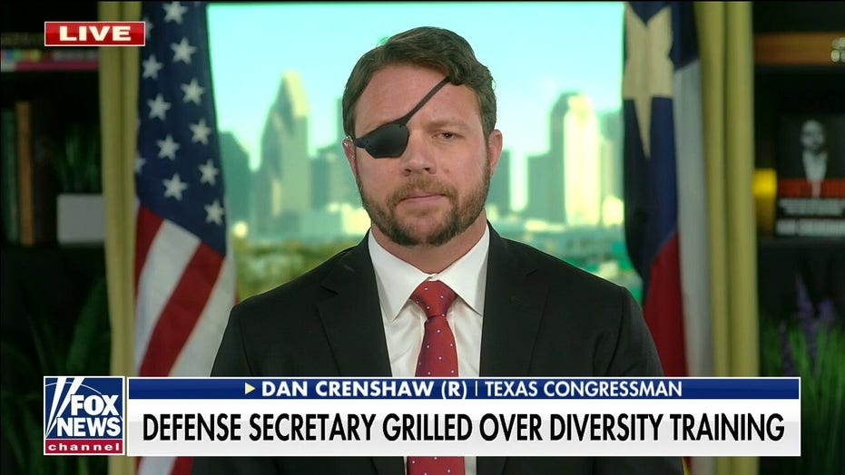 Military is 'most inclusive, least racist' institution in America: Crenshaw