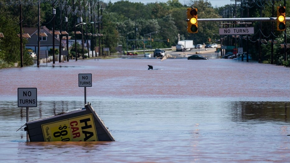 Ida's aftermath: Swollen rivers threaten new flooding in parts of Northeast as storms kill dozens