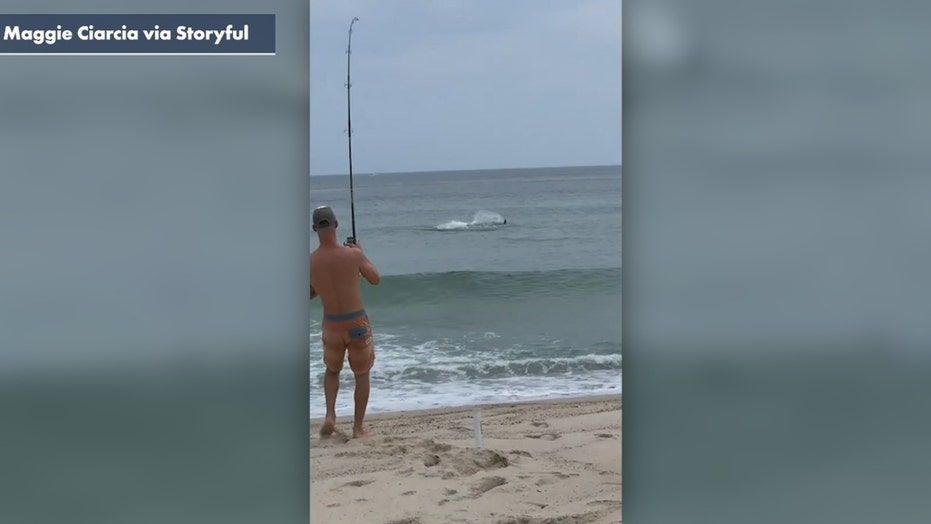 Man catches great white shark at beach after it tries to eat fish off his line