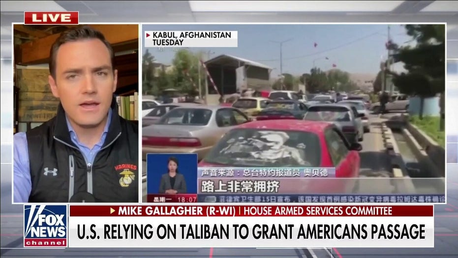 Rep. Gallagher warns 'we could see bodies being dragged through the streets' in Afghanistan