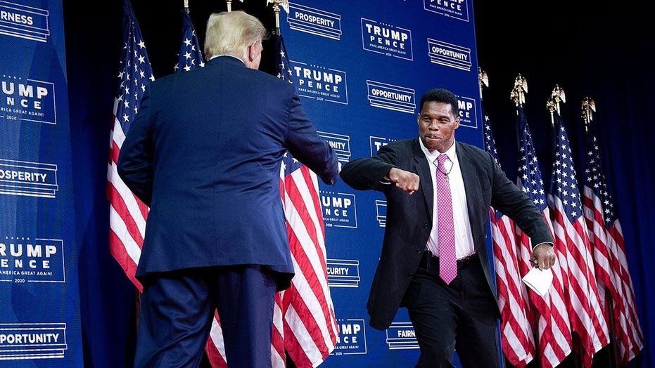 Herschel Walker: 'It's very important to have the backing of President Trump'