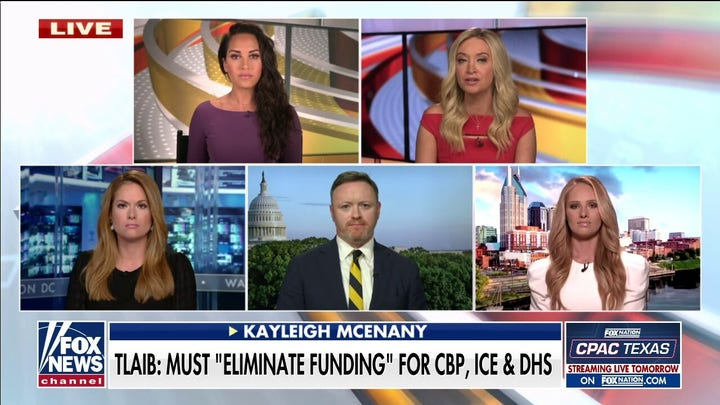 Tomi lahren: Democrats 'don't want to acknowledge' crime surge or border crisis