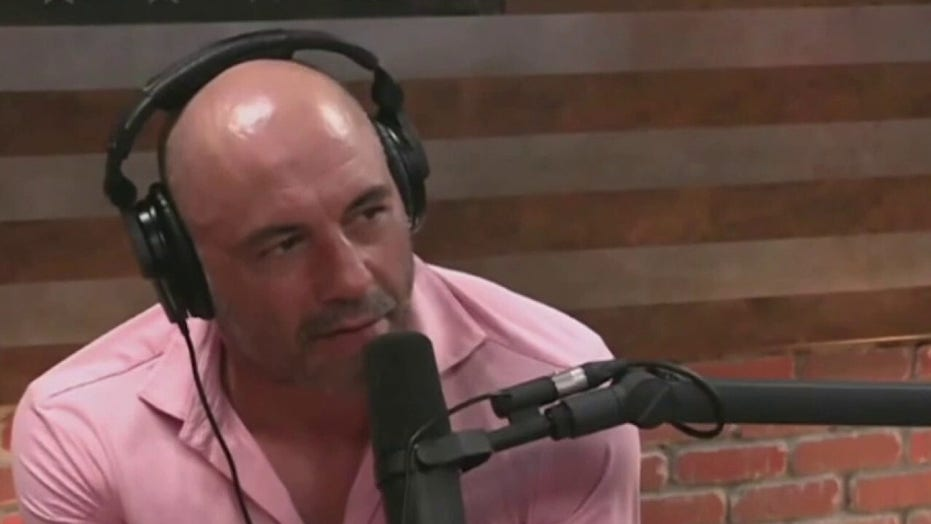 Dave Portnoy rips Howard Stern for vaccine-scolding Joe Rogan: 'He'd be wagging his finger at a younger self'