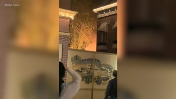 Fire breaks out at Disneyland, video shows