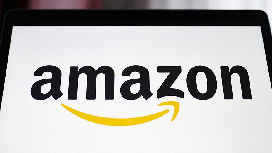 Mom donates more than 100 Amazon packages after delivery mistake