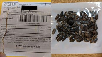 Mystery seeds now arriving in Texas mailboxes: report