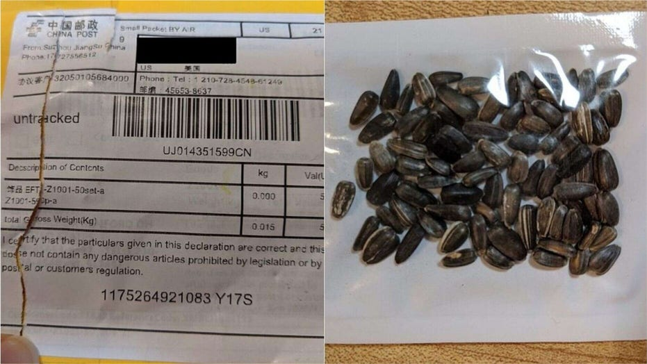 China plant seeds mystery solved? Police, officials think packages sent to  US homes could be tied to scam reviews | Fox News