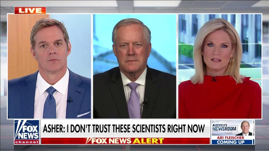 Meadows rips scientists' statements on coronavirus origins: We are in 'Biden cover-up mode'