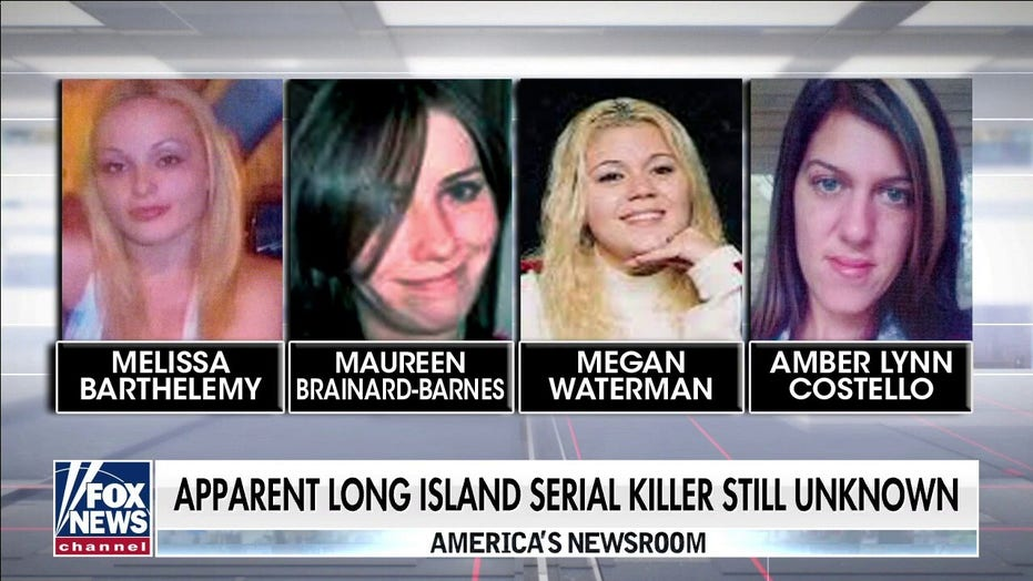 Gilgo Beach murders: New York state senator calling for attorney general to appoint special prosecutor