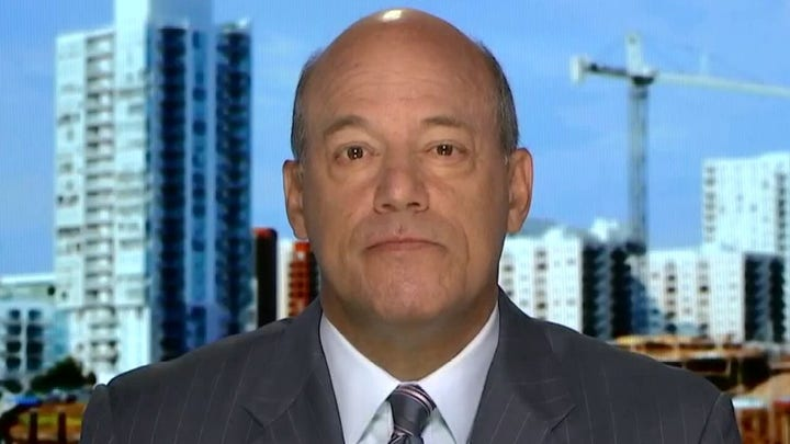 Fleischer on NY suing NRA: One of the dumbest mistakes an attorney general can make in an election year