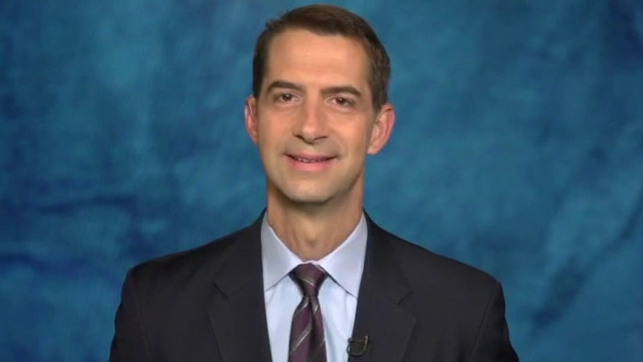 Sen. Cotton: Democrats silent on mobs because their bad policies caused it