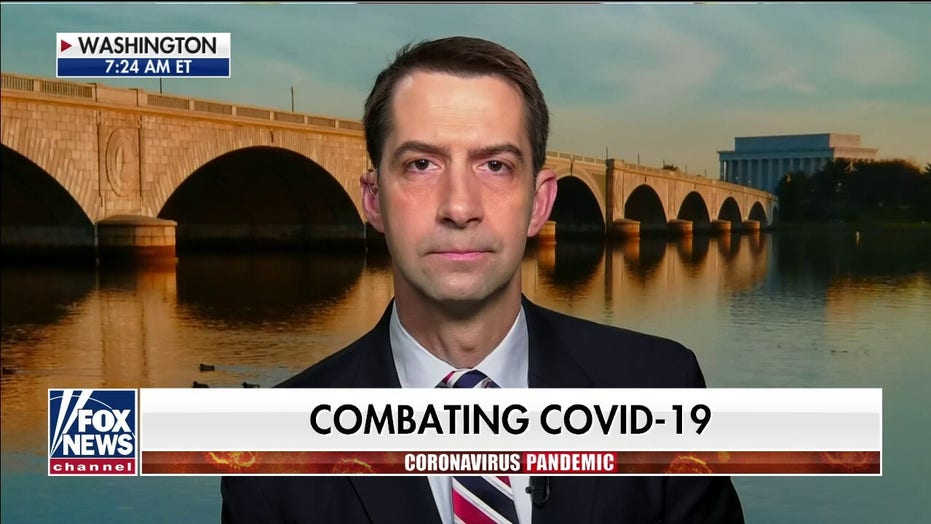 Sen. Cotton: 'China unleashed this plague on the world, there will be a reckoning'