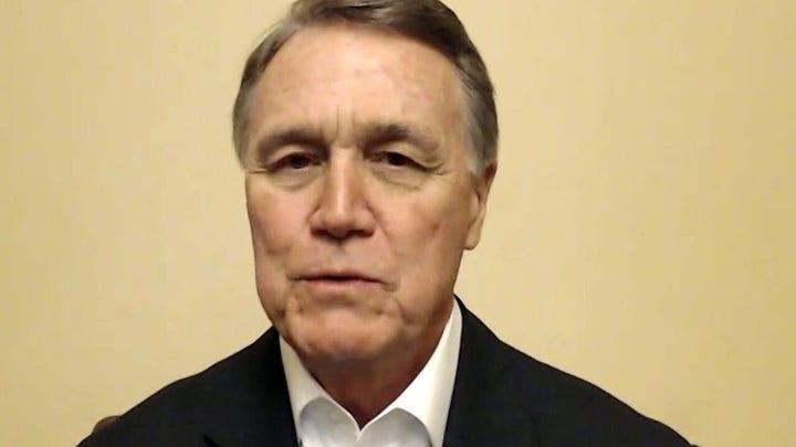 Sen. David Perdue says Georgia runoffs are 'last line of defense' against far left agenda