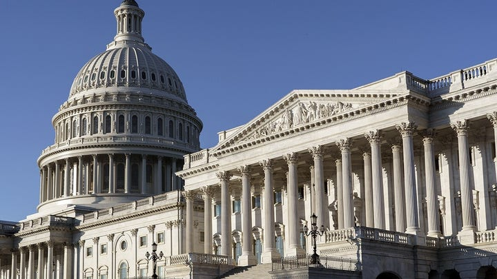 Democrats will throw away control of Congress with 'radical' budget agenda: Newt Gingrich