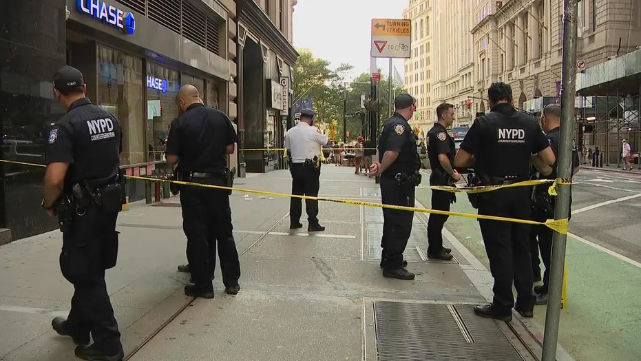 NYC slashing: man brutally attacked by hatchet-wielding maniac at bank ATM