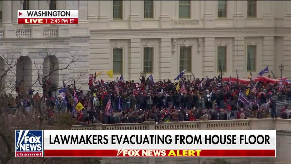 Karl Rove: Protestors storm Capitol — this is how mobs act, not patriots and all American hearts should ache