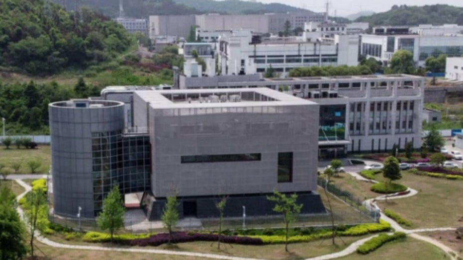 Wuhan lab director denies COVID-19 escaped from his laboratory
