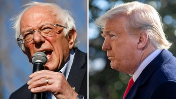 Newt Gingrich: Trump vs. Bernie Sanders and the Democrats – The statesman beats the food fighters