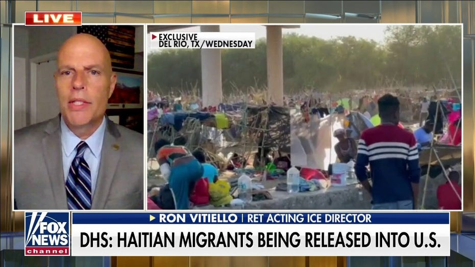 Former acting ICE chief Ron Vitiello blames 'loopholes in immigration law' for border crisis