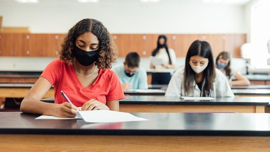 """Estudiantes de escuelas públicas que son """"abusados"""" por la educación crítica de la teoría racial: Carol Swain"""