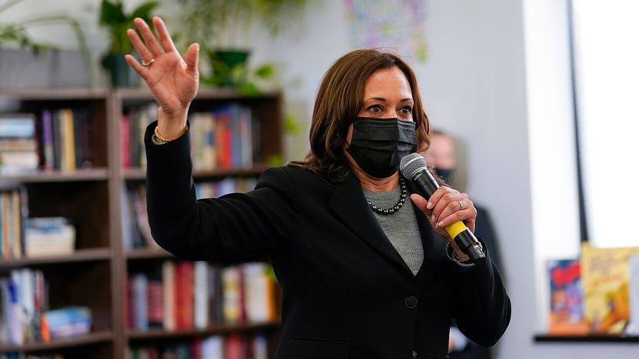 Kamala Harris needs to visit border before making policies: Texas lawmaker