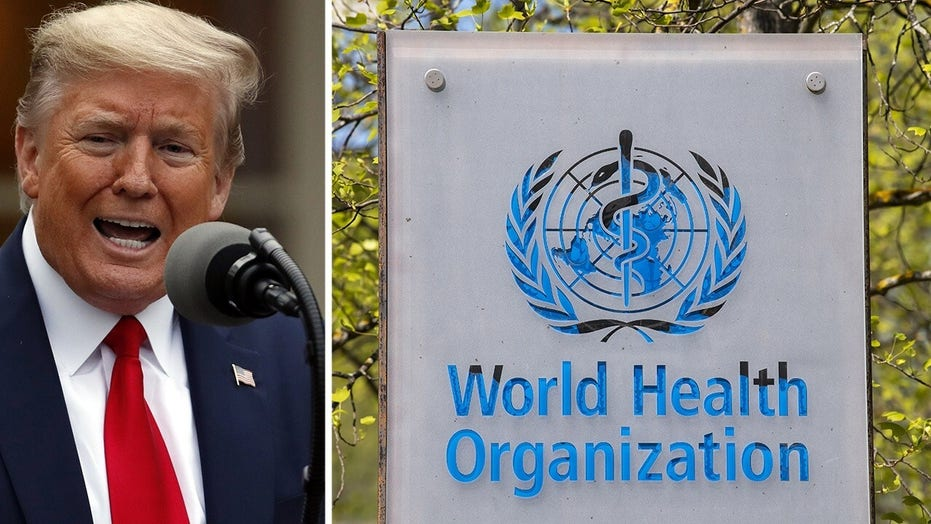 Is Trump's tough action against the WHO warranted?