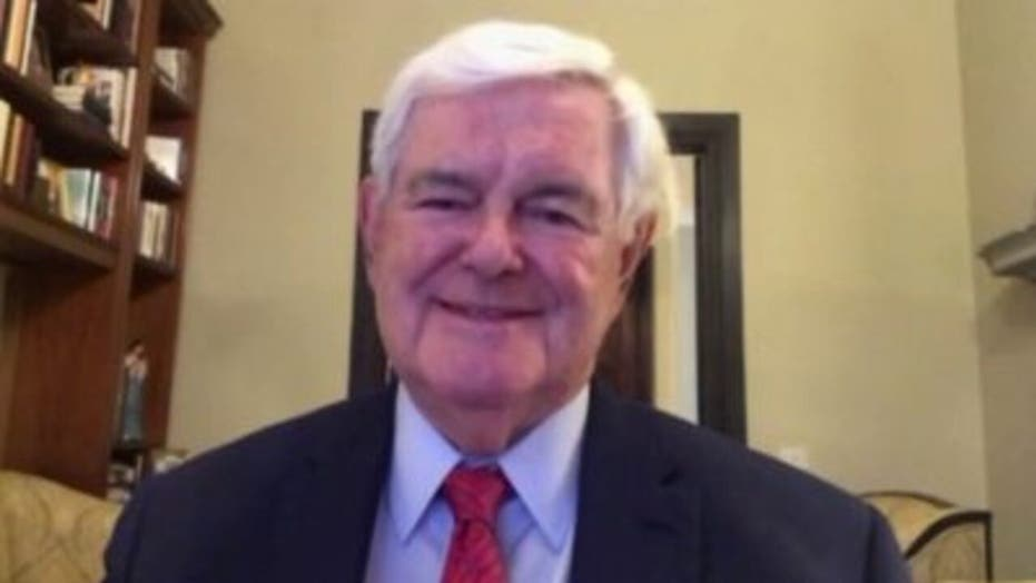 Gingrich rips Republican senators yielding to 'phony bipartisanship' to support 'terrible' infrastructure bill