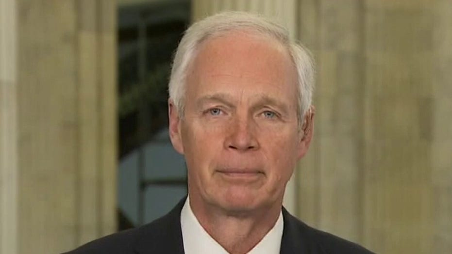 Sen. Johnson blasts Sen. Peters after election fraud hearing dustup