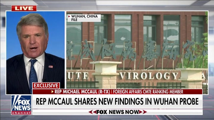 Reps. McCaul shares new findings in Wuhan probe: Increased 'hospital activity' in September