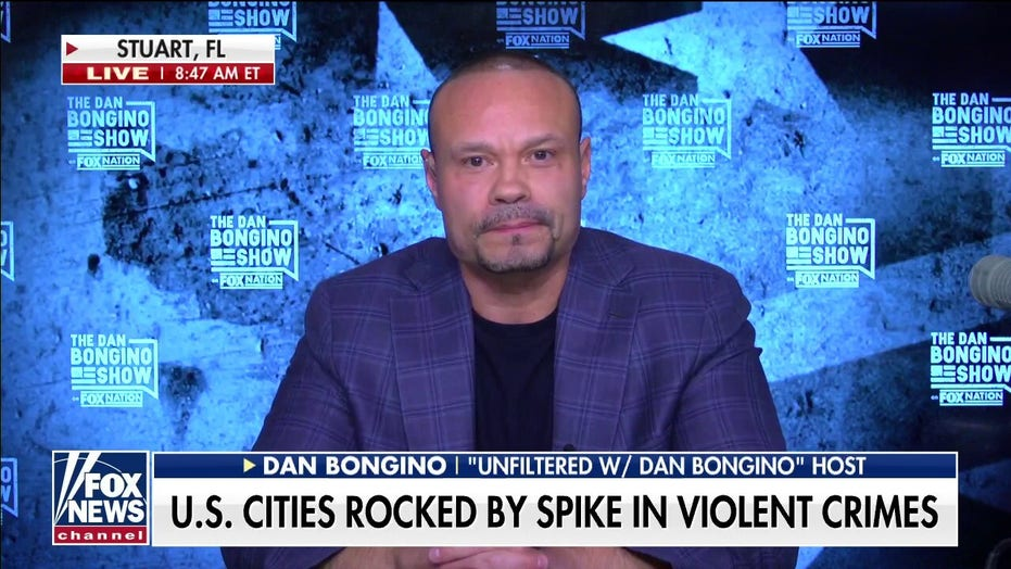 Dan Bongino on 'Fox & Friends': Only liberals 'scratching their heads' over explosion of crime in US cities