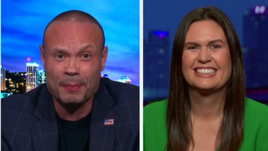 Bongino: Capitol riot shows '50% of security and public safety is political'