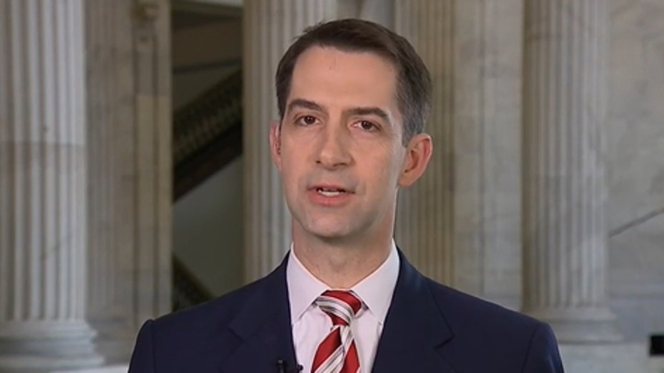 Sen. Cotton reacts to Schumer: Dems' 'depraved' abortion practices real issue at stake