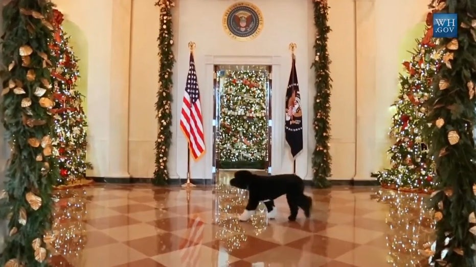 Untold meaning behind White House Christmas decor through the years