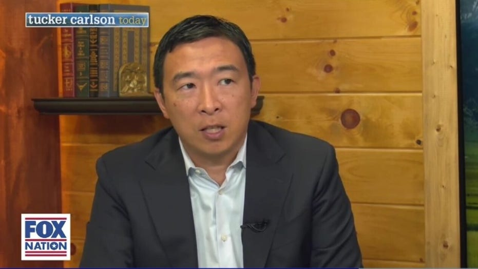 Andrew Yang could be part of mass exodus of Asian Americans ditching Democratic Party, author says