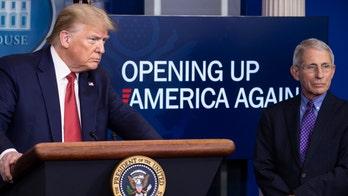 Media push Trump-Fauci battle