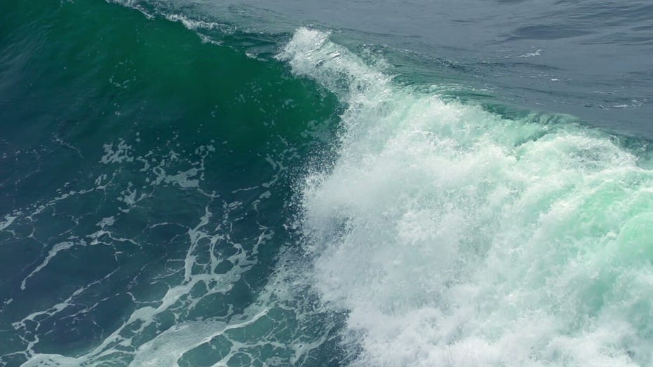 'Sneaker wave' danger in Pacific Northwest highlighted in recent West Coast tragedies