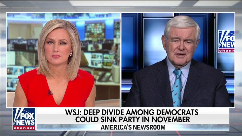 Newt Gingrich: Dems want to shoot at Trump until they get him