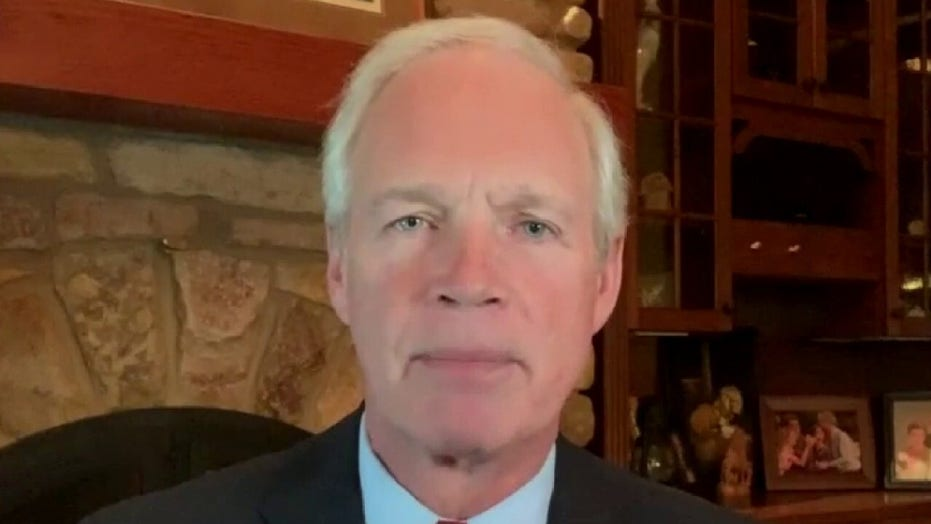 Sen. Ron Johnson: Hunter Biden traded on his last name 'to make millions of dollars'