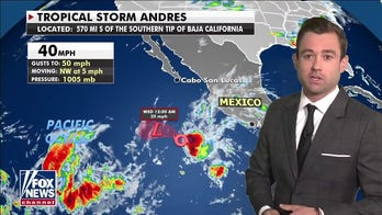 National weather forecast: Hurricane season expected to have above-average activity
