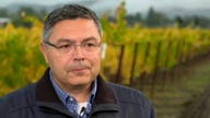 Wine industry experiencing supply chain bottlenecks amid 'shortage of bottles'